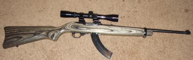 Ruger 10-22 Rifle